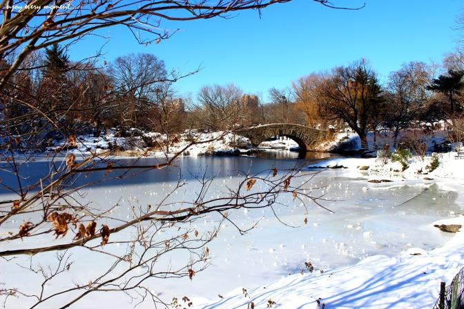 Winter wonderland - Central Park