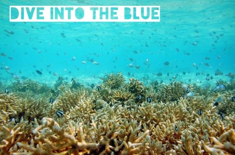 Velassaru Resort review maldives