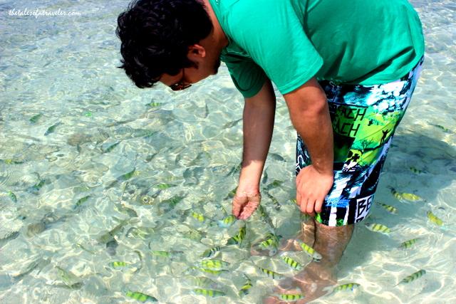 Koh Tup Island , Krabi